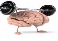 拯救老化健忘,有效鍛鍊腦力的「超級記憶力」訓練!